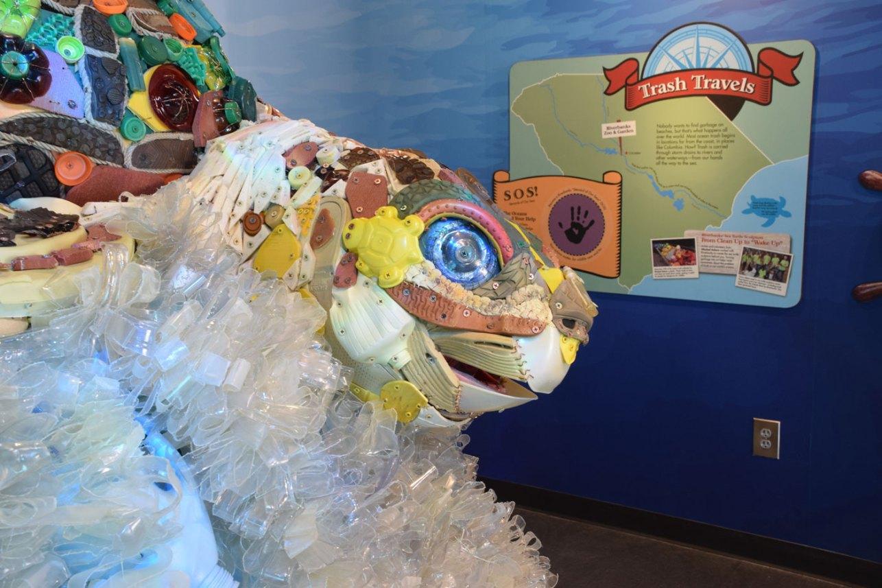 exhibit-sea-lion-11