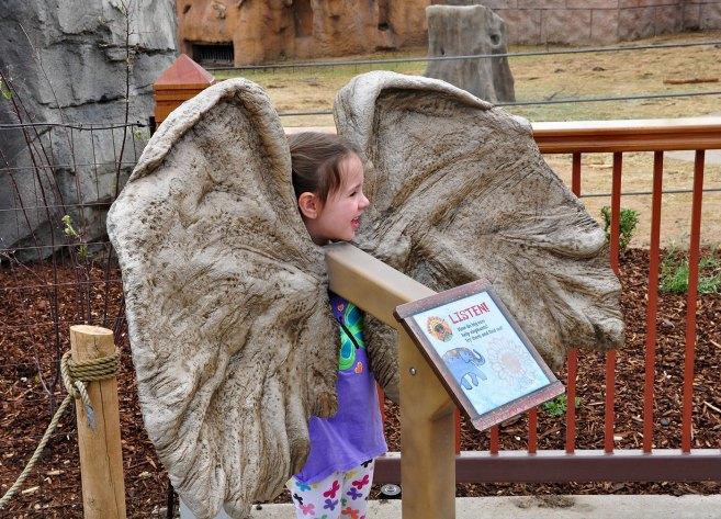 exhibits-elephant-12