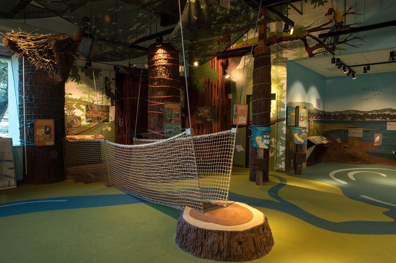 exhibits-habitarium-15