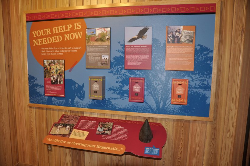 exhibits-rare-rhino-11