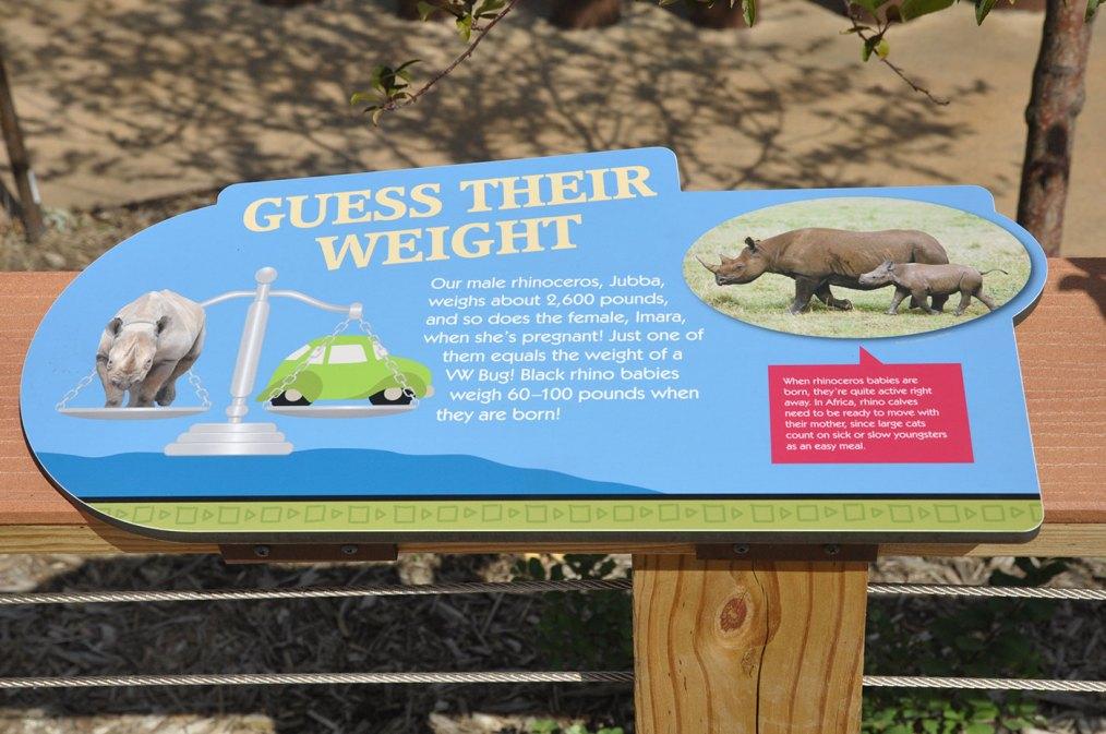 exhibits-rare-rhino-4