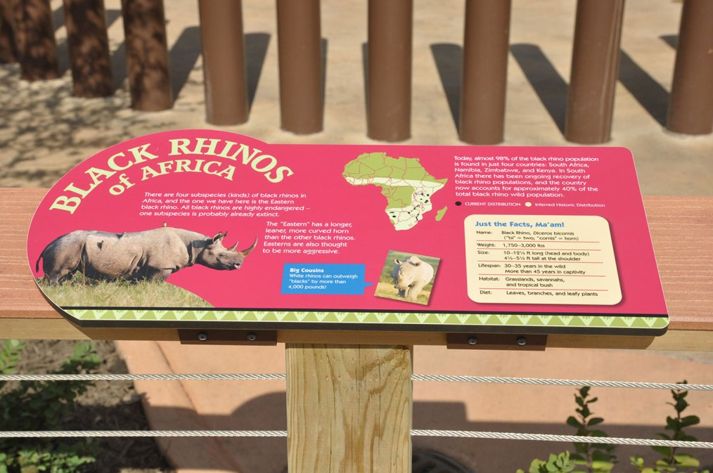 exhibits-rare-rhino-5