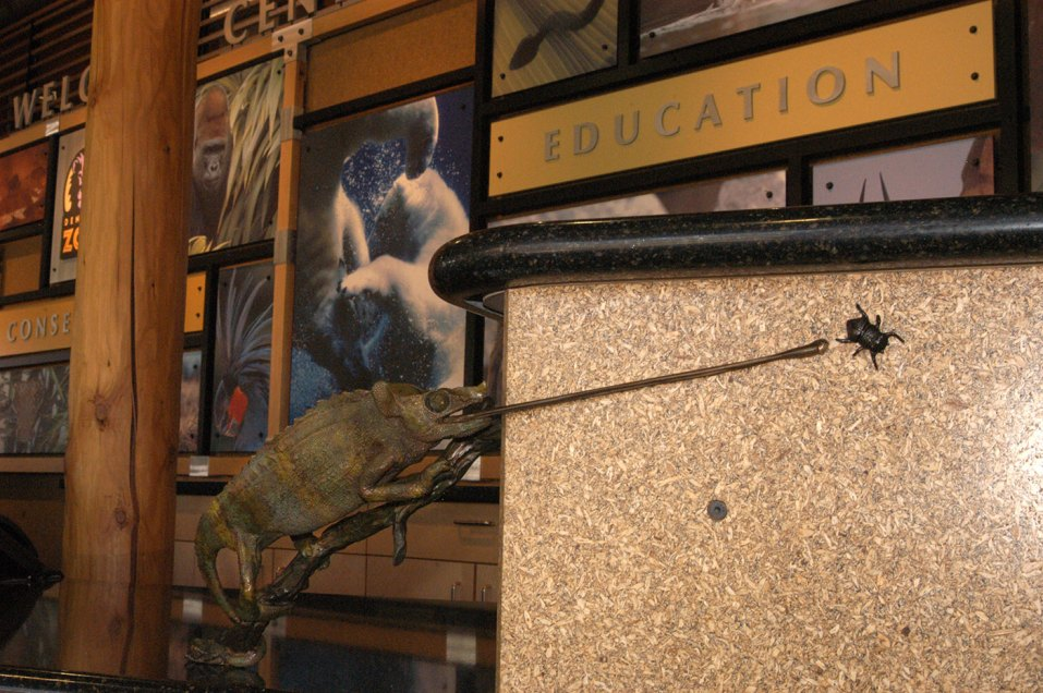 sculpture-tactile-lizard-bug