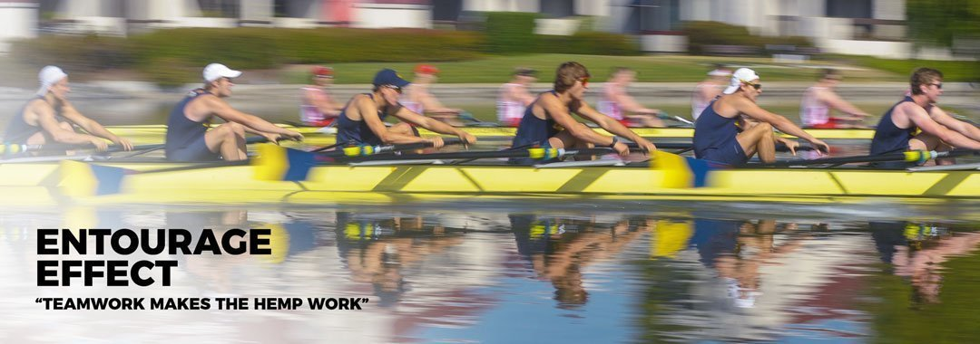 Teamwork with a rowing crew