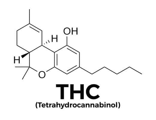 Tetrahydrocannabinol THC molecule
