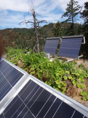 Solar real estate on the Eco-Sense roof: Growing food, producing electricity, making hot water, and harvesting rain water. Nice View too!