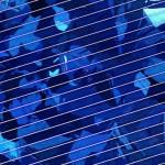 Ausgereifte Photovoltaikanlagen für private Haushalte