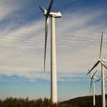 Die Windkraftleistung nimmt global zu