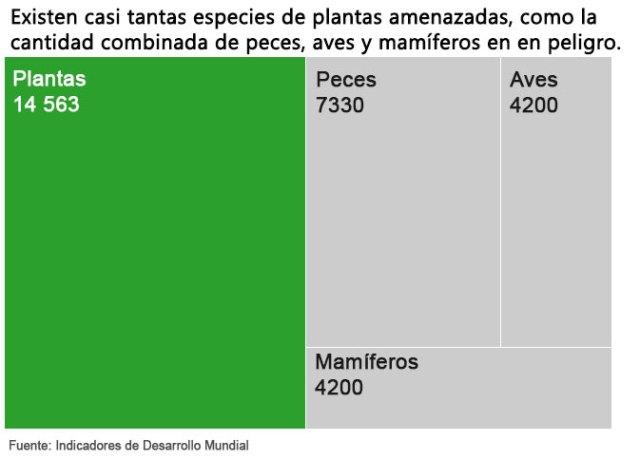 amenaza ecosistema