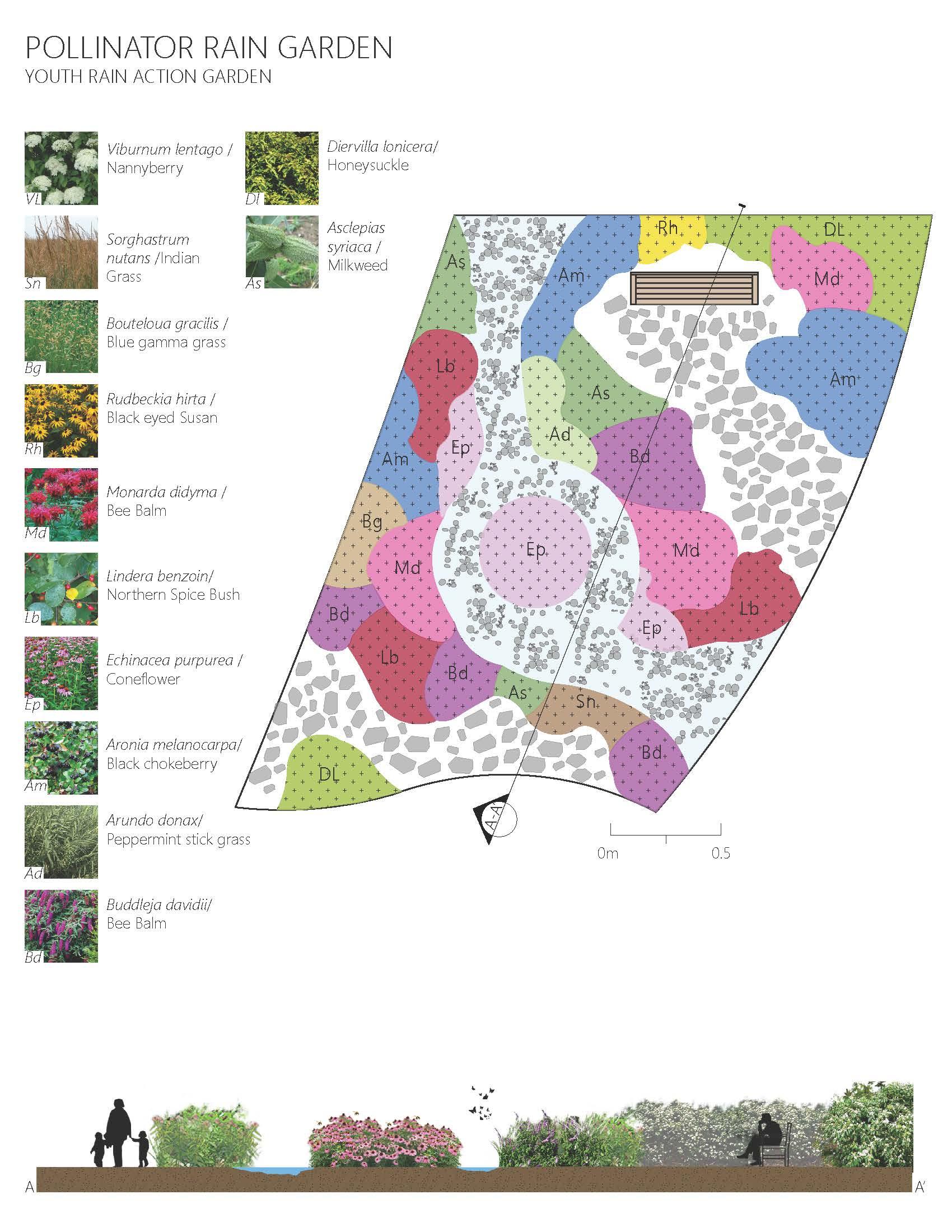 the winning garden pollinator garden