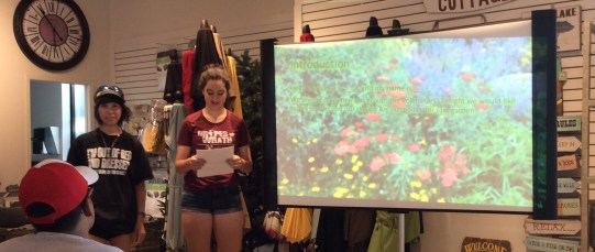 Pollinator group presenting heir design