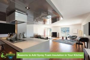 Reasons to Add Spray Foam Insulation in Your Kitchen