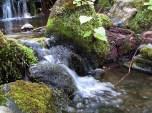(37.875, -122.238) The same waterfall suitable for fish travel.