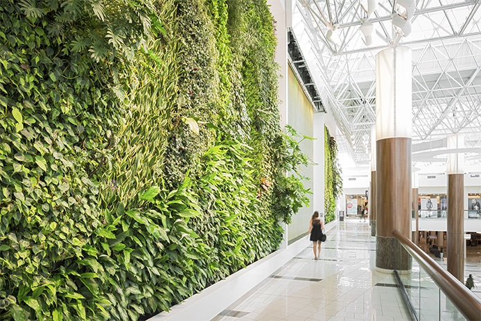 Living Wall 1