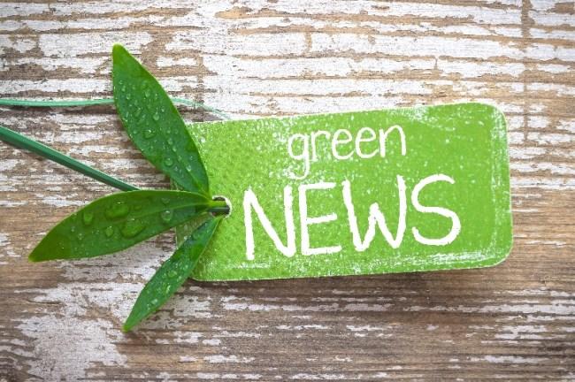 Green News Sign