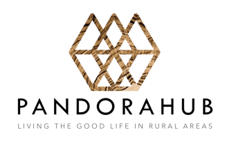 pandorahub-logo-vertical-1