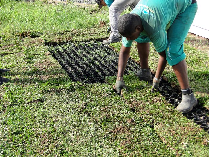 Instalación de grama
