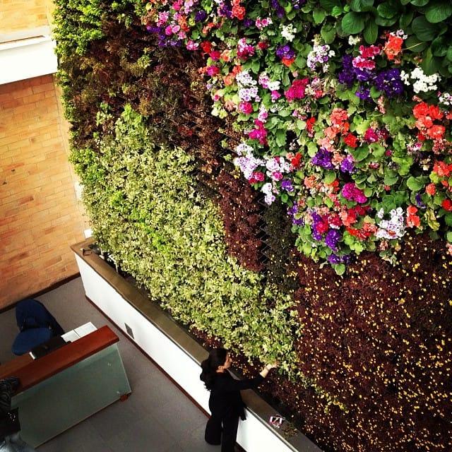 jardinvertical-bogota-colombia-ecotelhado