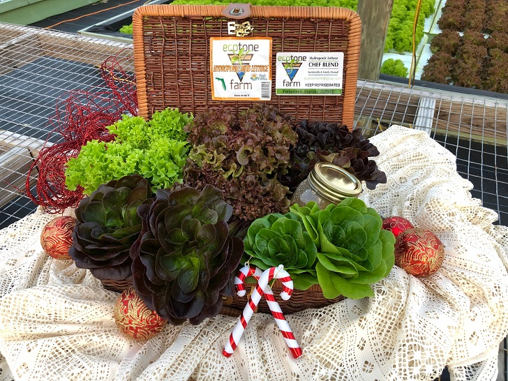 Holiday Gift Basket From Ecotone Farm