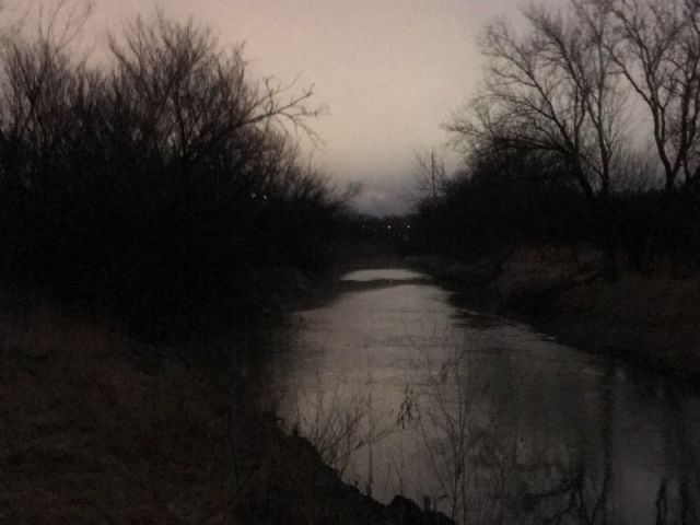 dark stream with grass and trees