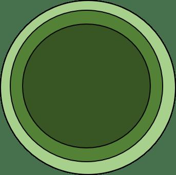 auroville economics 3