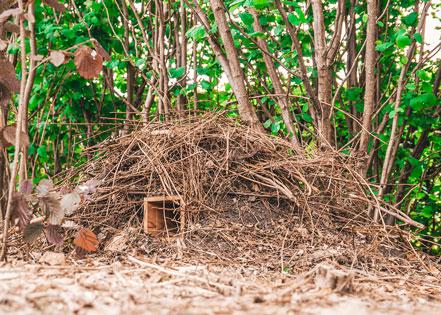 Egelhuis, gemaakt uit lariks. Deze nestkast is op maat gemaakt voor de egel.