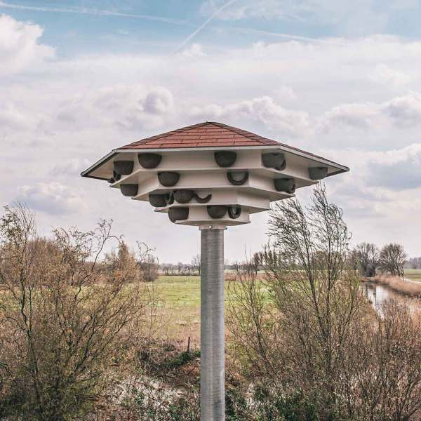 grote zwaluwtil voor maximaal 90 nesten voor de huiszwaluw