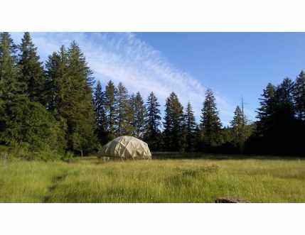 meadow jpeg