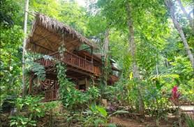 Belize Business for Sale