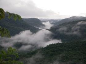 Belize Eco Community