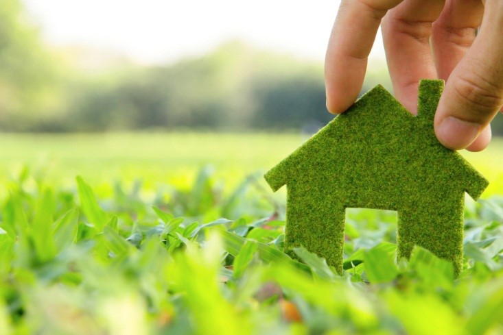 5 Ways Students Can Green Up Their Lifestyle (1)