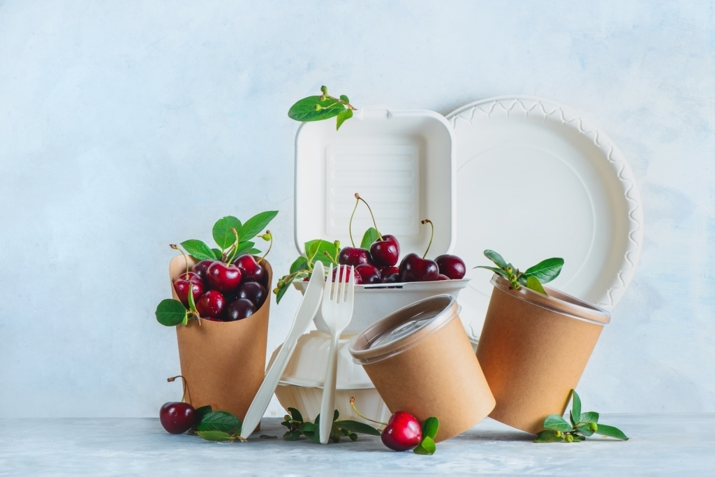 Eco-friendly Biodegradable Products