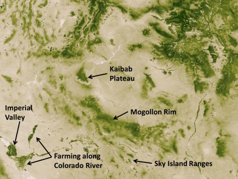 NASA vegetation Southwest