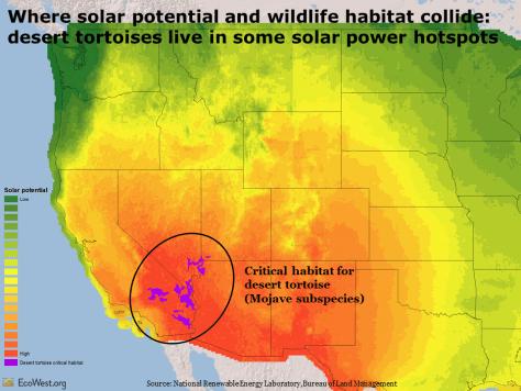 Solar energy potential and desert tortoise habitat