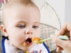 gmo free baby food