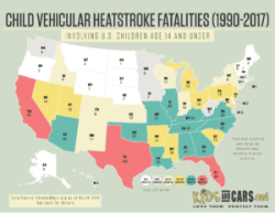 child deaths in hot cars