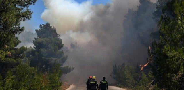 Πυρκαγιά ξέσπασε σε δασική έκταση στην Κασσάνδρα Χαλκιδικής