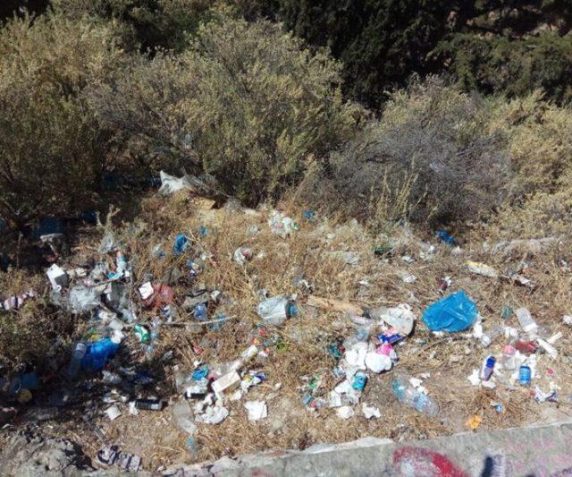 Δήμος Αθηναίων: Ολικό