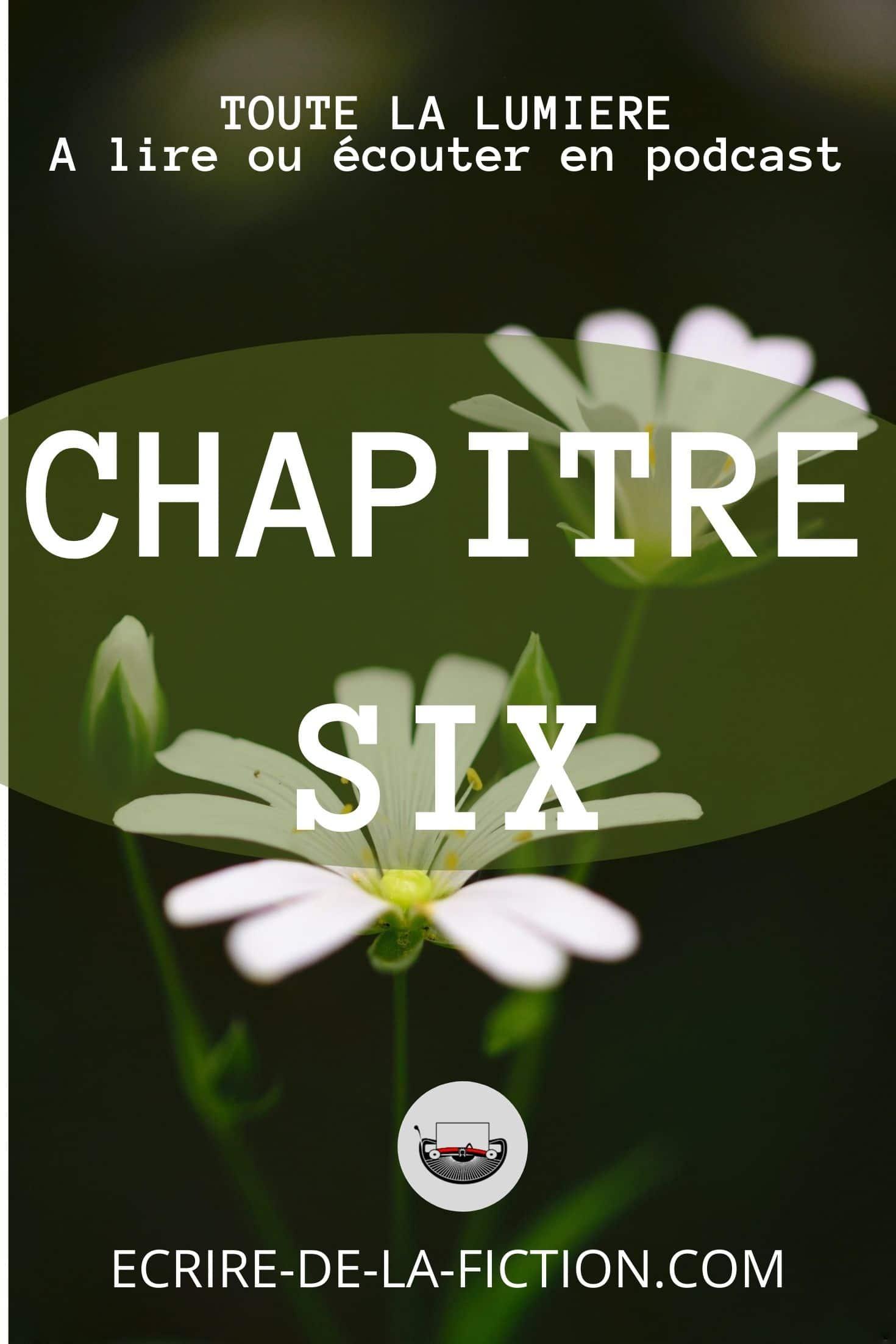 chapitre six marguerites sur fond sombre