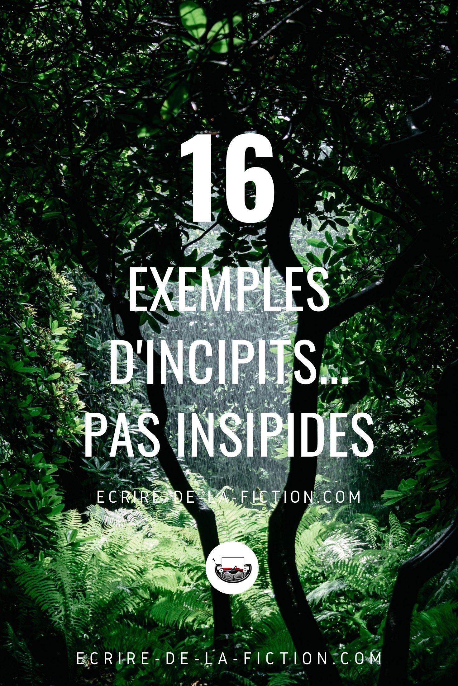 16 exemples d'incipit epingle pinterest