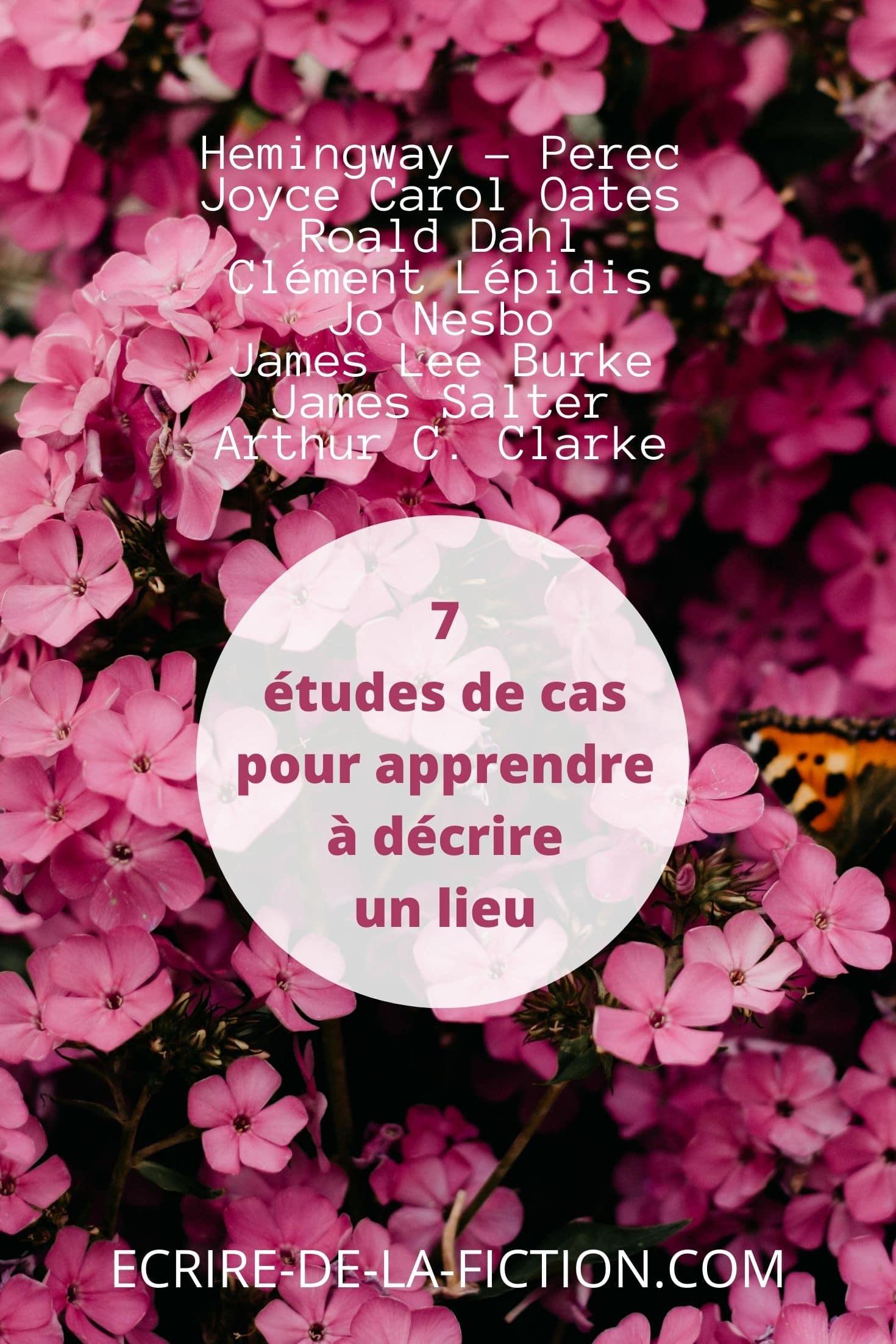 fleurs roses 7 etudes de cas pour decrire lieu