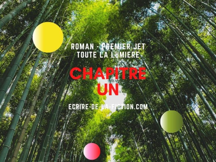 🎧📖[roman] Toute la lumière – chapitre 1