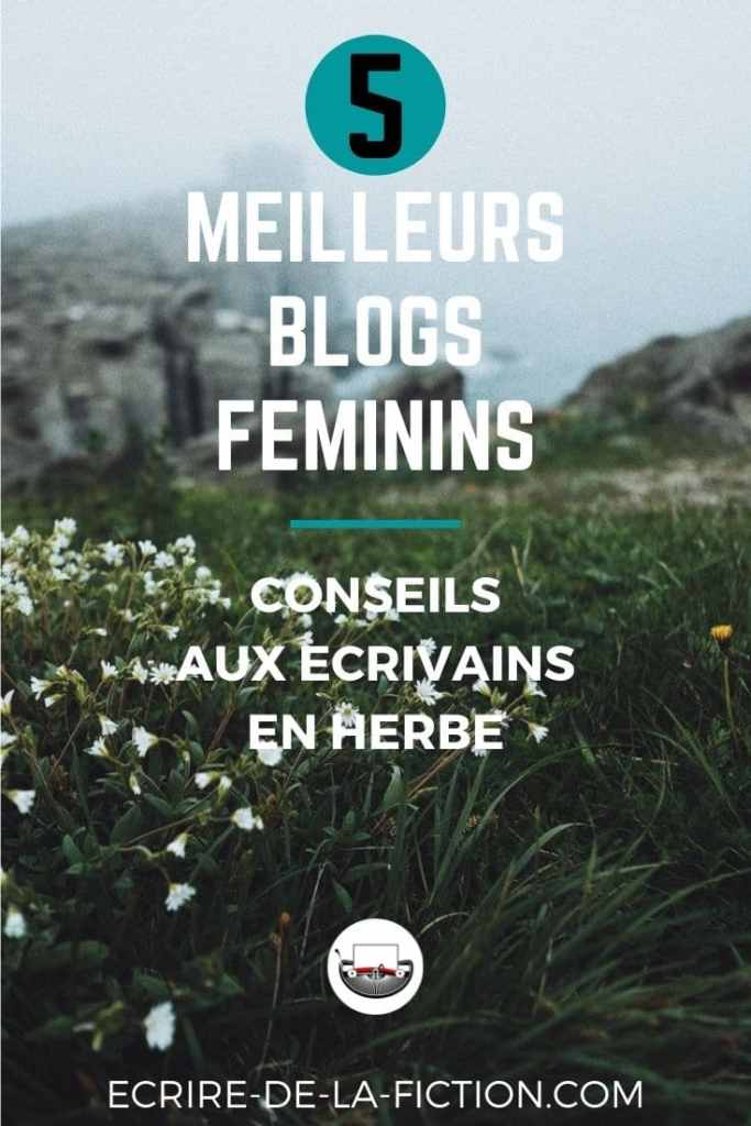 meilleurs-blogs-conseils-ecrivains-herbe