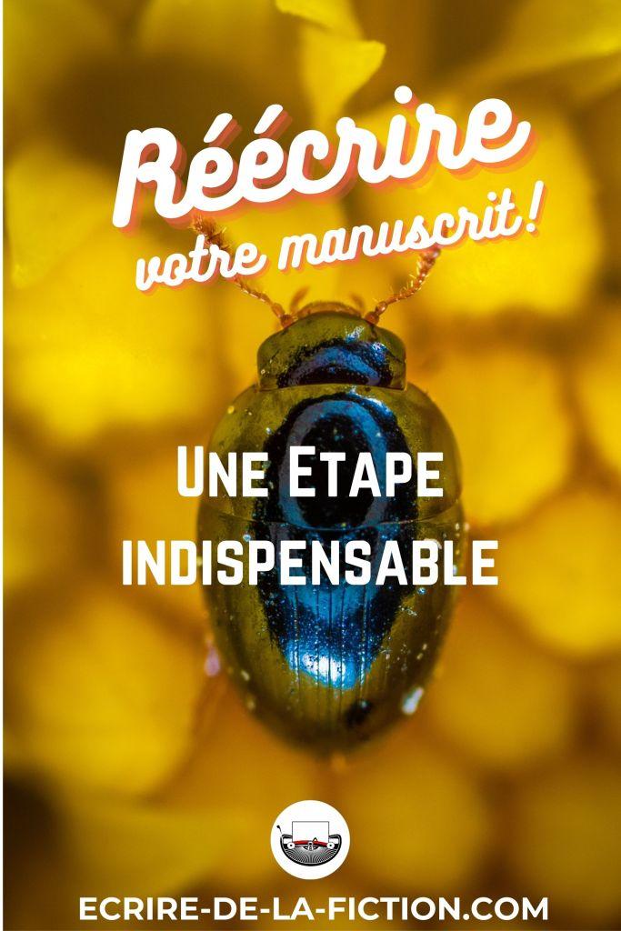 reecriture-coleoptere-bleu-fond-jaune