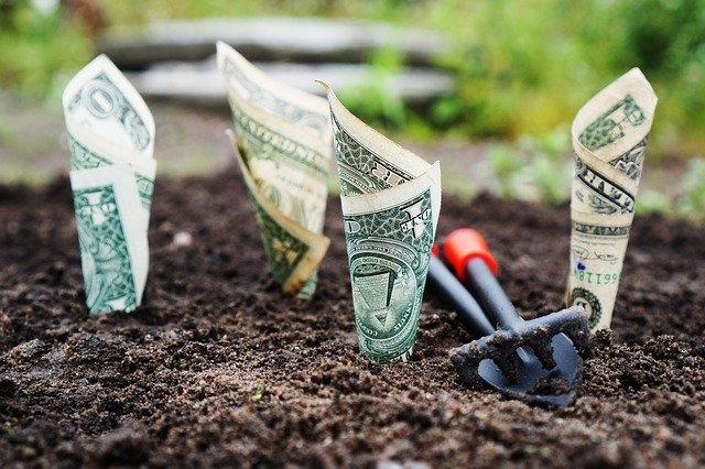 L'argent ne pousse pas, vous devez optimiser le coût de l'autoédition