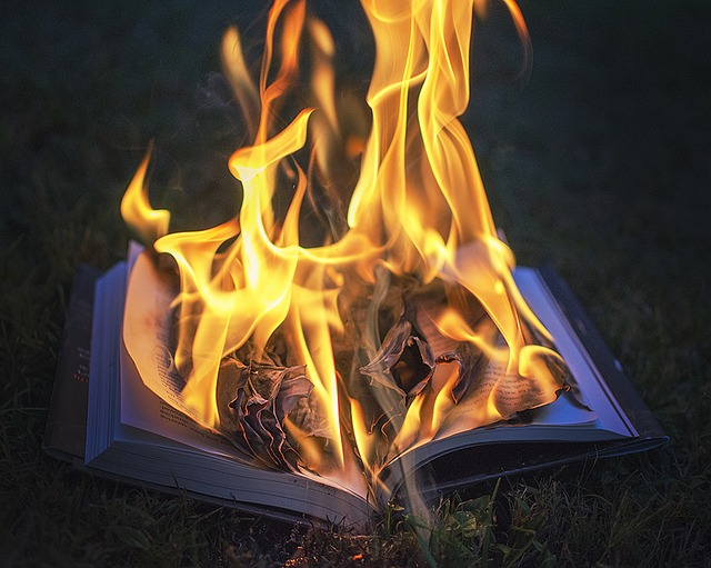 Corrigez votre roman plutôt que de le brûler