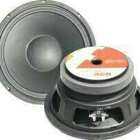 SPEAKER 10 INCH ACR FABULOUS 2560 400 WATT ARRAY