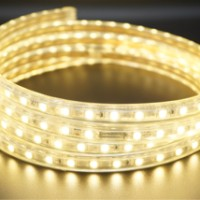 1 meter LX8008 Lampu LED Strip 5050 Selang 220V Tembaga Waterproof
