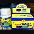 Herbal Multiguna gamat plus spirulina alpha gold