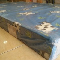 Kasur Busa Royal Foam Pioneer 160x200 Garansi 10th